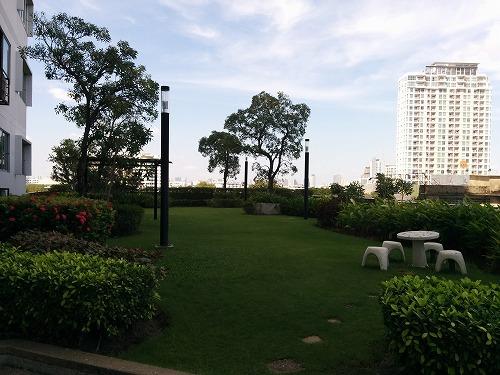 garden-04