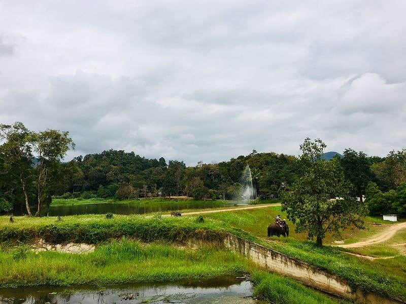 ラムパーンで観光した象施設