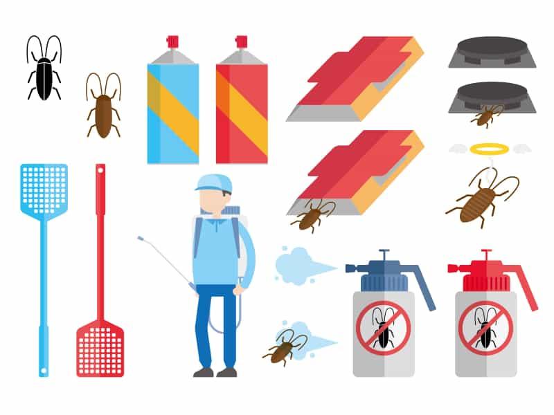 ゴキブリ根絶は専門家じゃないと無理