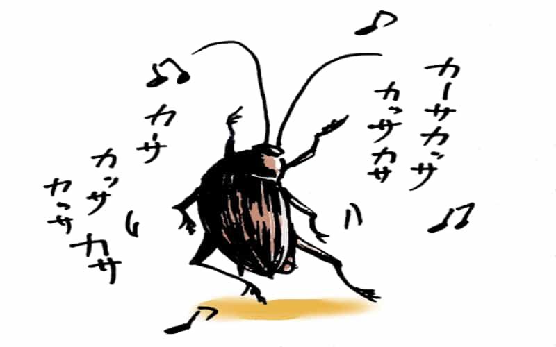 ゴキブリのヤバさがわかる特徴